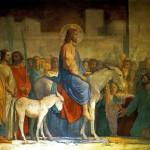 Meditação para o Domingo de Ramos e da Paixão do Senhor