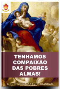 Livro Católico Online: Tenhamos Compaixão das Pobres Almas!