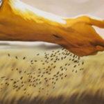 A parábola do semeador e a palavra divina