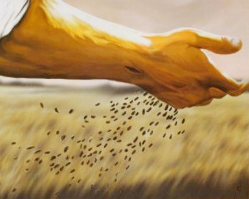 Parábola do Semeador e a Palavra Divina
