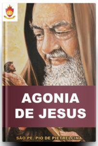 Agonia de Nosso Senhor, por São Pe. Pio de Pietrelcina