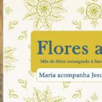 Maria Santíssima acompanha Jesus na vida evangélica