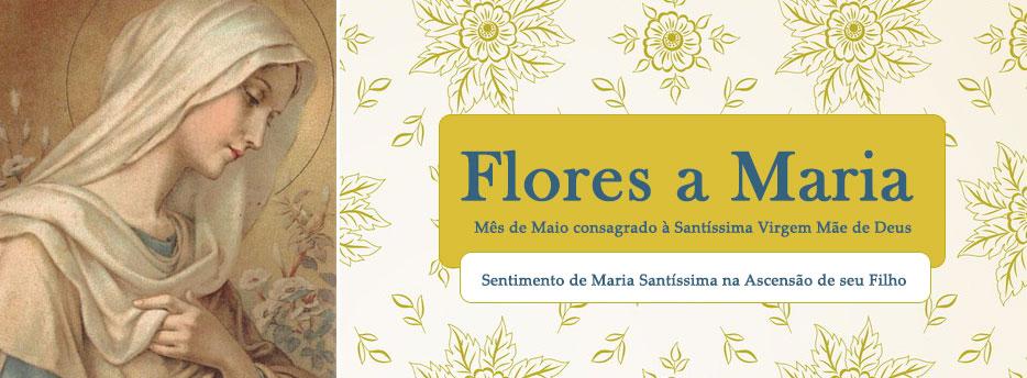Capítulo 24: Sentimento de Maria Santíssima na Ascensão de seu Filho