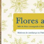Motivos de confiança no Patrocínio de Maria Santíssima